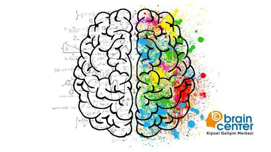 insan beyni nasıl çalışır
